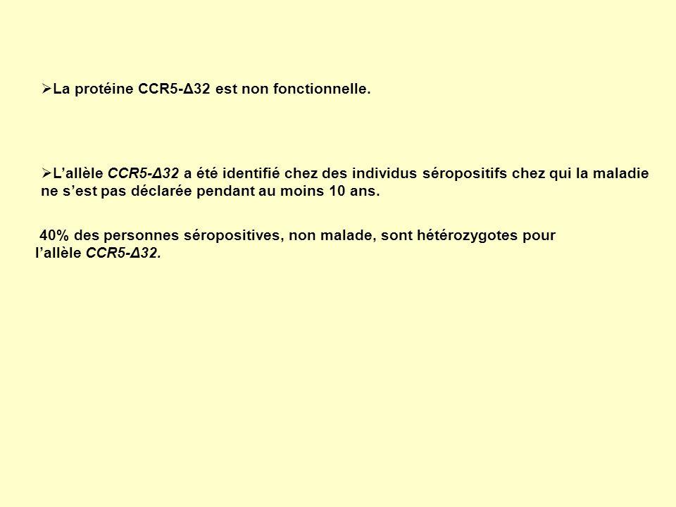 La protéine CCR5-Δ32 est non fonctionnelle.