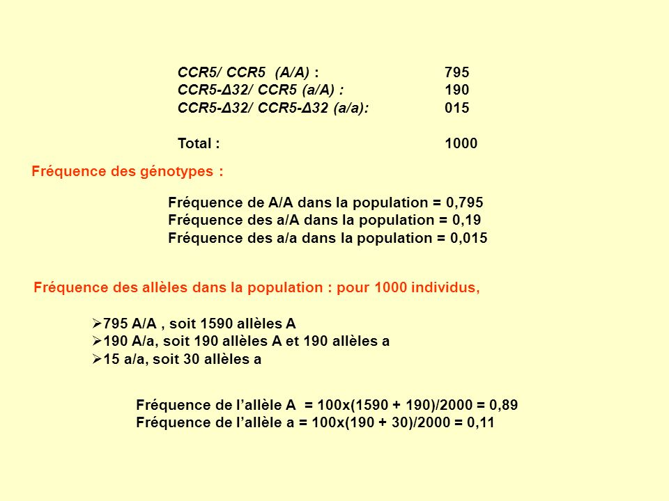 CCR5/ CCR5 (A/A) : 795 CCR5-Δ32/ CCR5 (a/A) : 190. CCR5-Δ32/ CCR5-Δ32 (a/a): 015. Total : 1000.