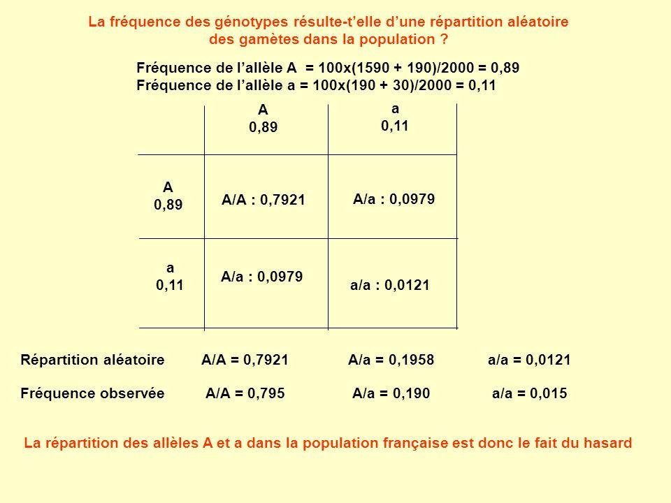 La fréquence des génotypes résulte-t'elle d'une répartition aléatoire des gamètes dans la population