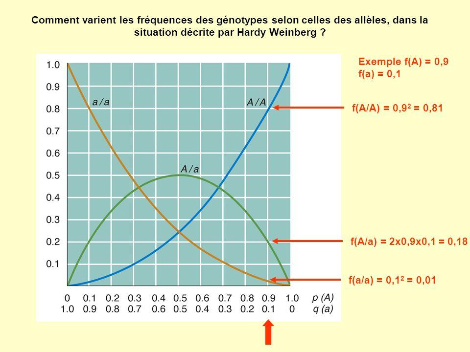 Comment varient les fréquences des génotypes selon celles des allèles, dans la situation décrite par Hardy Weinberg