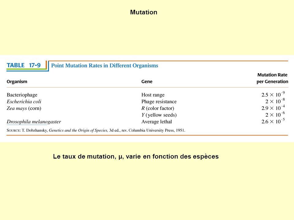 Mutation Le taux de mutation, µ, varie en fonction des espèces