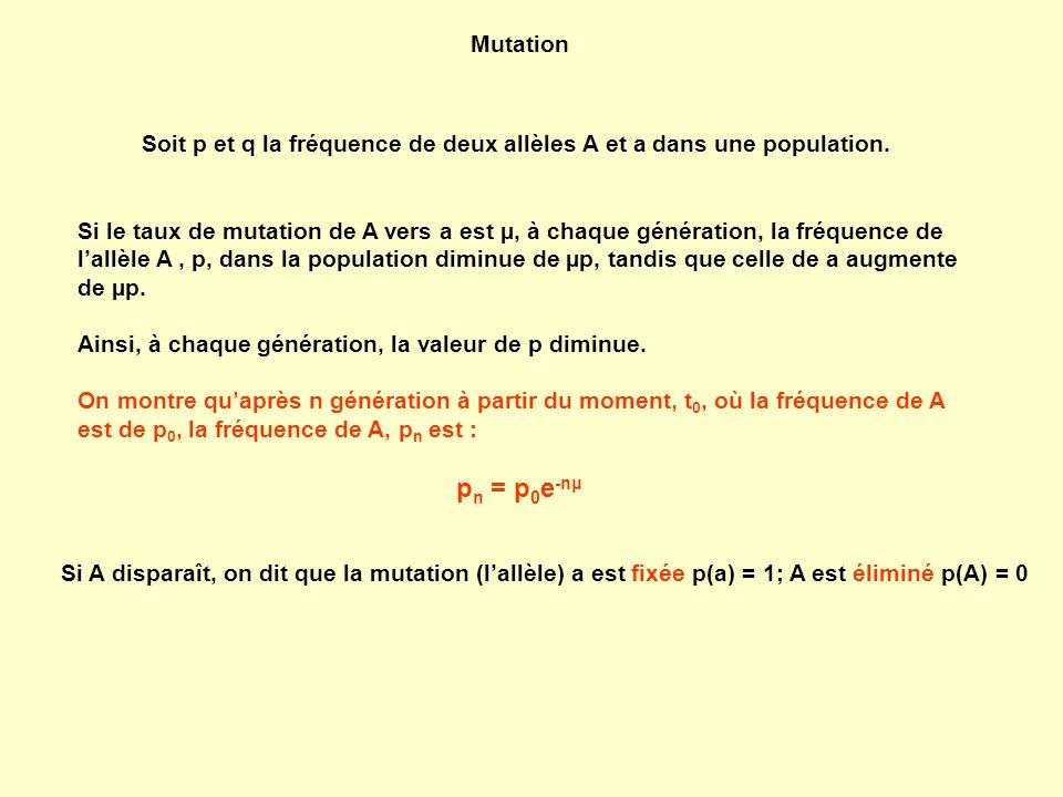 Mutation Soit p et q la fréquence de deux allèles A et a dans une population.