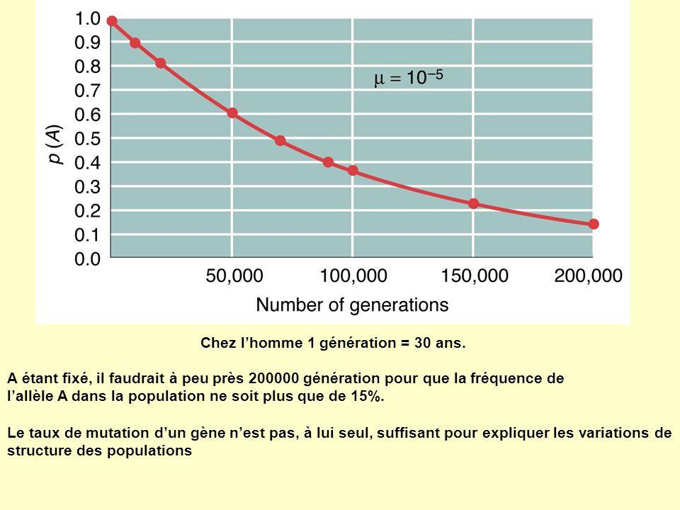Chez l'homme 1 génération = 30 ans.