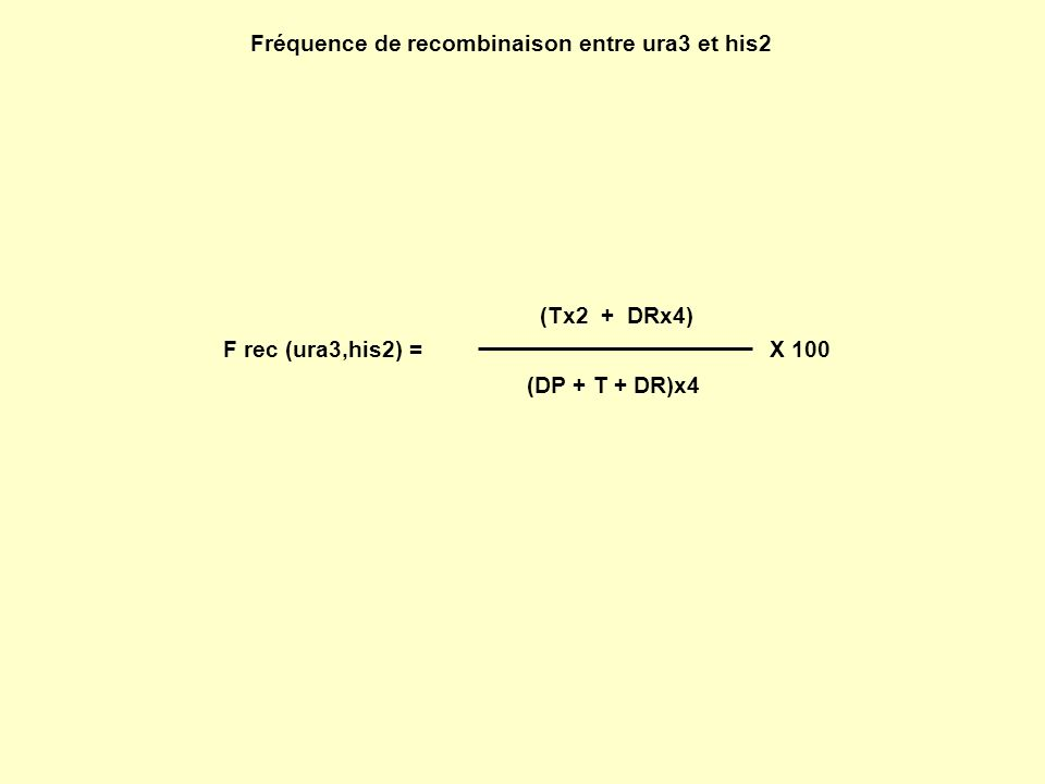Fréquence de recombinaison entre ura3 et his2