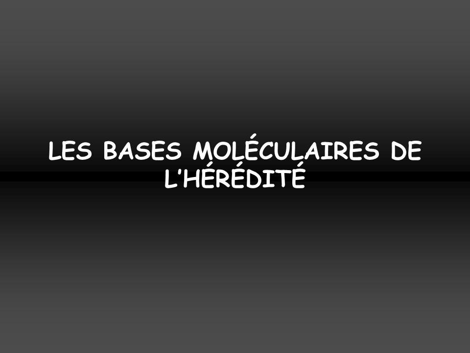 LES BASES MOLÉCULAIRES DE L'HÉRÉDITÉ