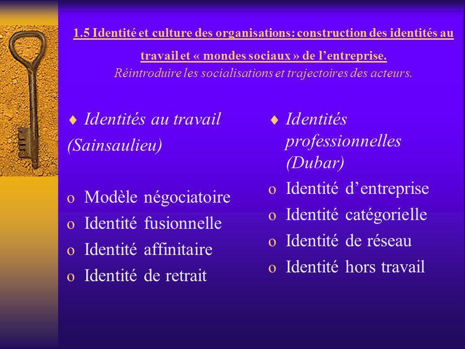 Identités professionnelles (Dubar)