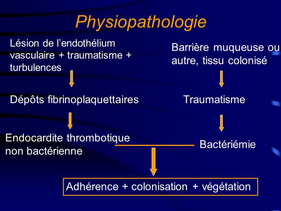 Physiopathologie Barrière muqueuse ou autre, tissu colonisé
