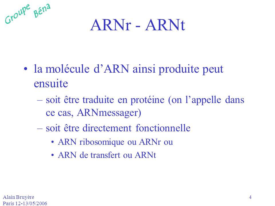 ARNr - ARNt la molécule d'ARN ainsi produite peut ensuite
