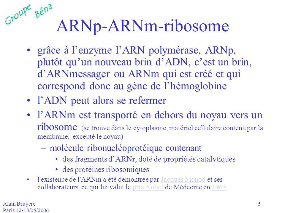 ARNp-ARNm-ribosome