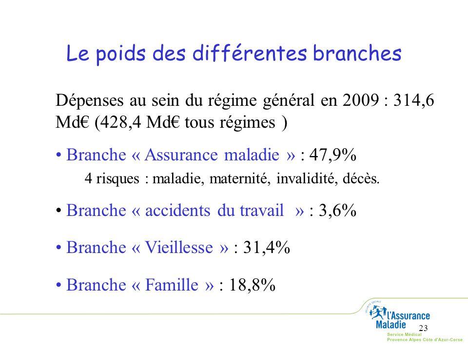 Le poids des différentes branches