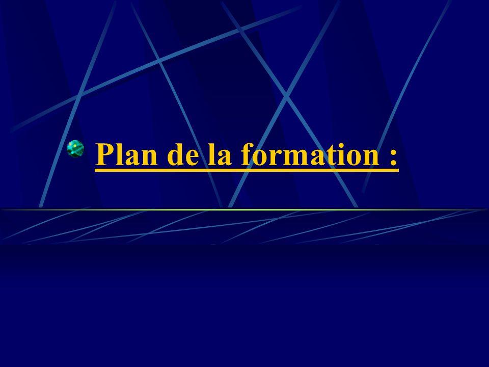 Plan de la formation :
