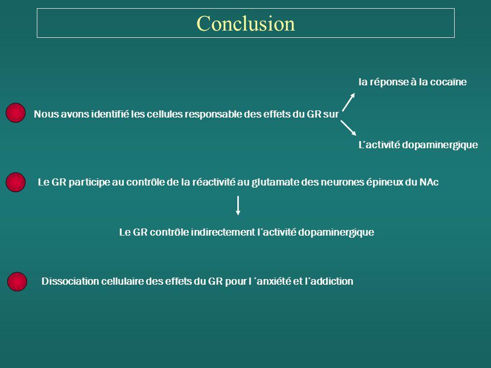 Conclusion la réponse à la cocaïne