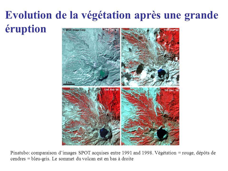 Evolution de la végétation après une grande éruption