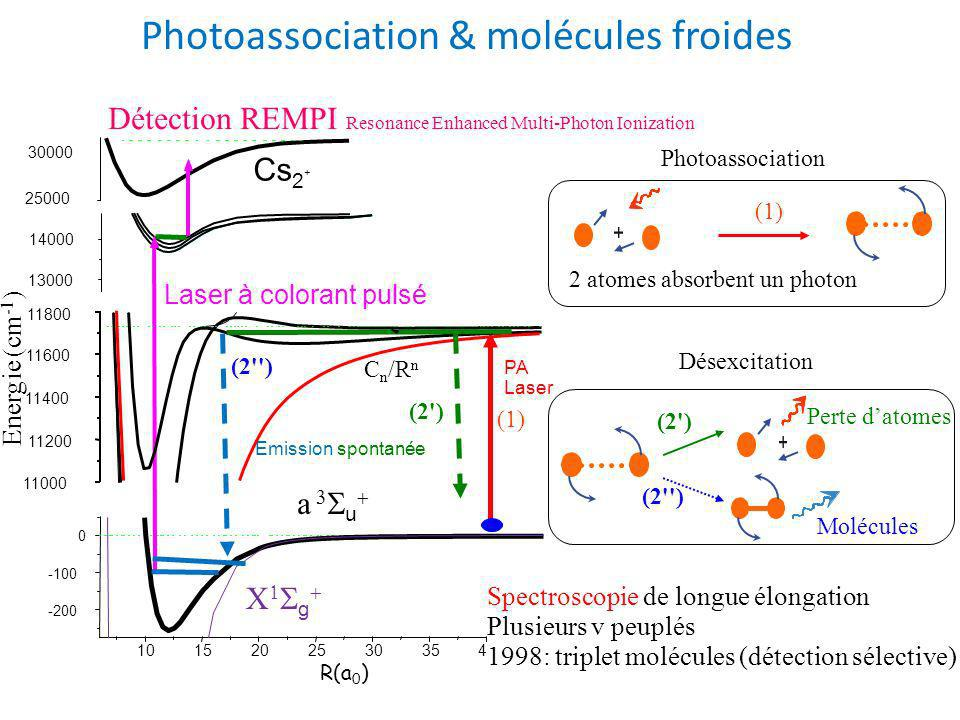 Photoassociation & molécules froides