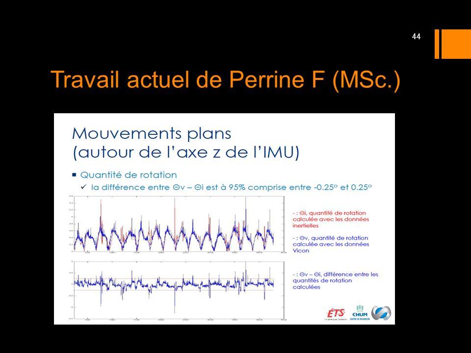 Travail actuel de Perrine F (MSc.)