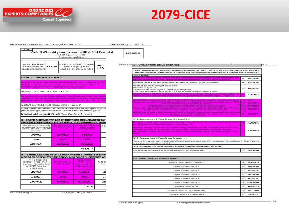 2079-CICE
