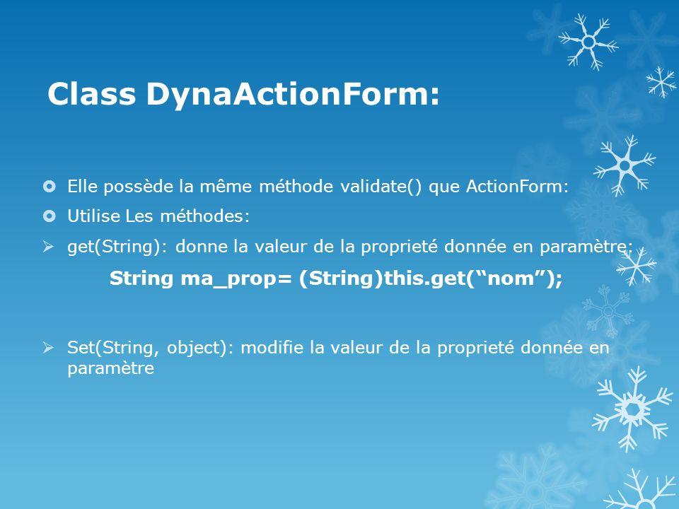 Class DynaActionForm: