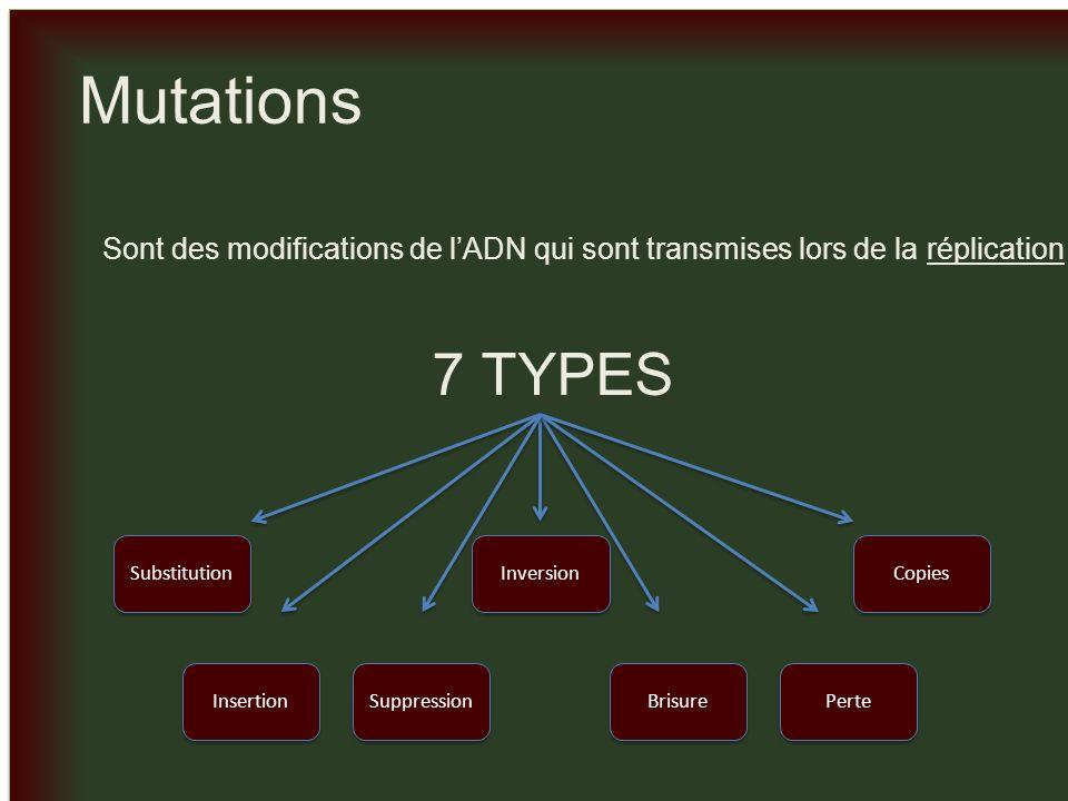 _ Mutations. Sont des modifications de l'ADN qui sont transmises lors de la réplication. 7 TYPES.