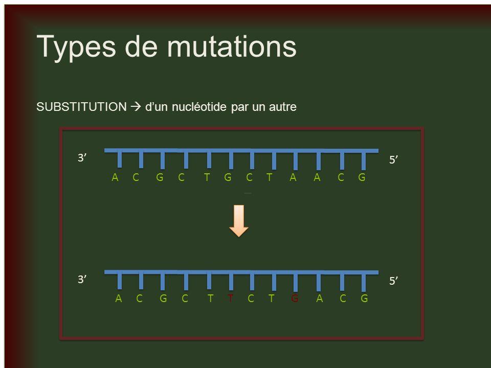 Types de mutations _ SUBSTITUTION  d'un nucléotide par un autre 3' 5'
