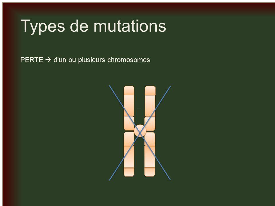 _ Types de mutations PERTE  d'un ou plusieurs chromosomes