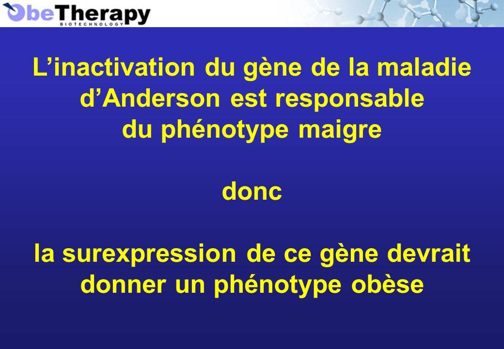 L'inactivation du gène de la maladie d'Anderson est responsable