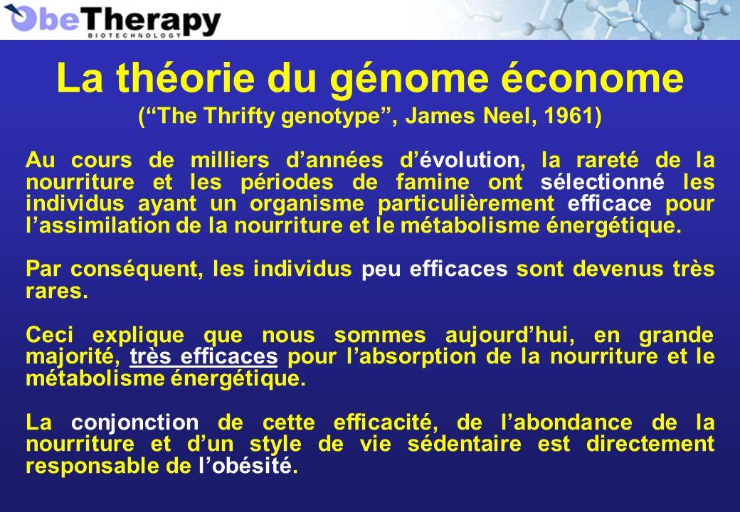 La théorie du génome économe