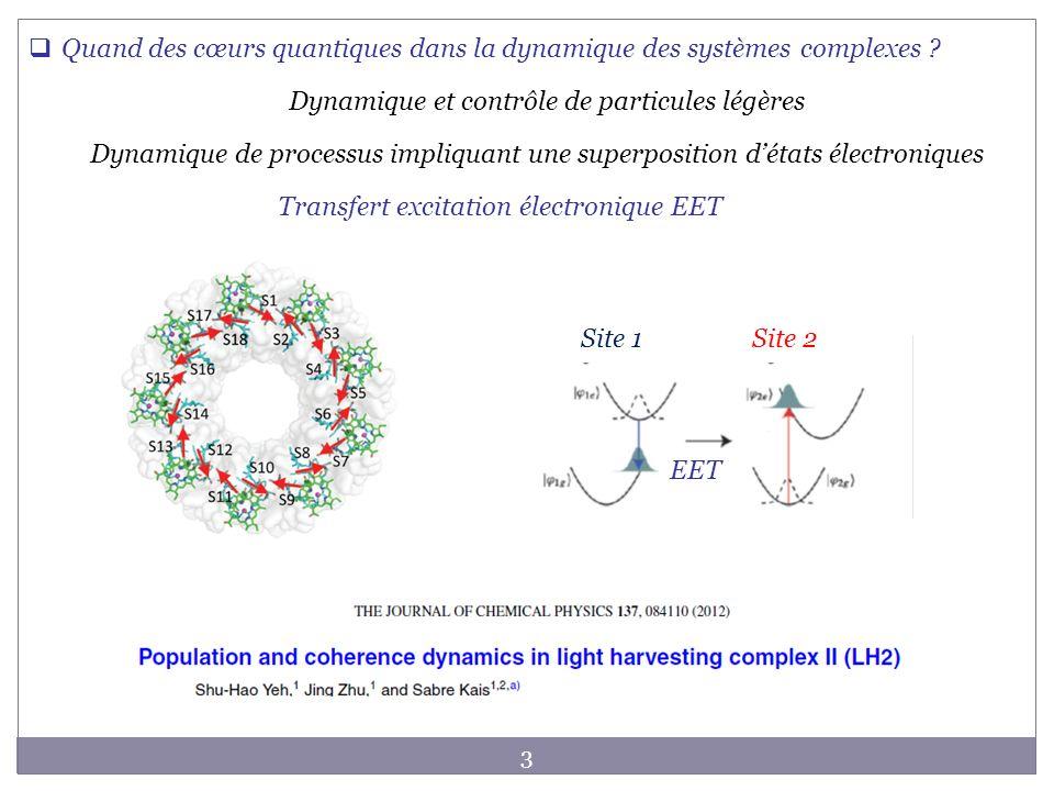 Quand des cœurs quantiques dans la dynamique des systèmes complexes