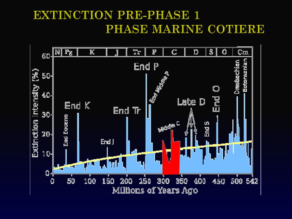 Extinction PRE-phase 1 Phase marine cotiere