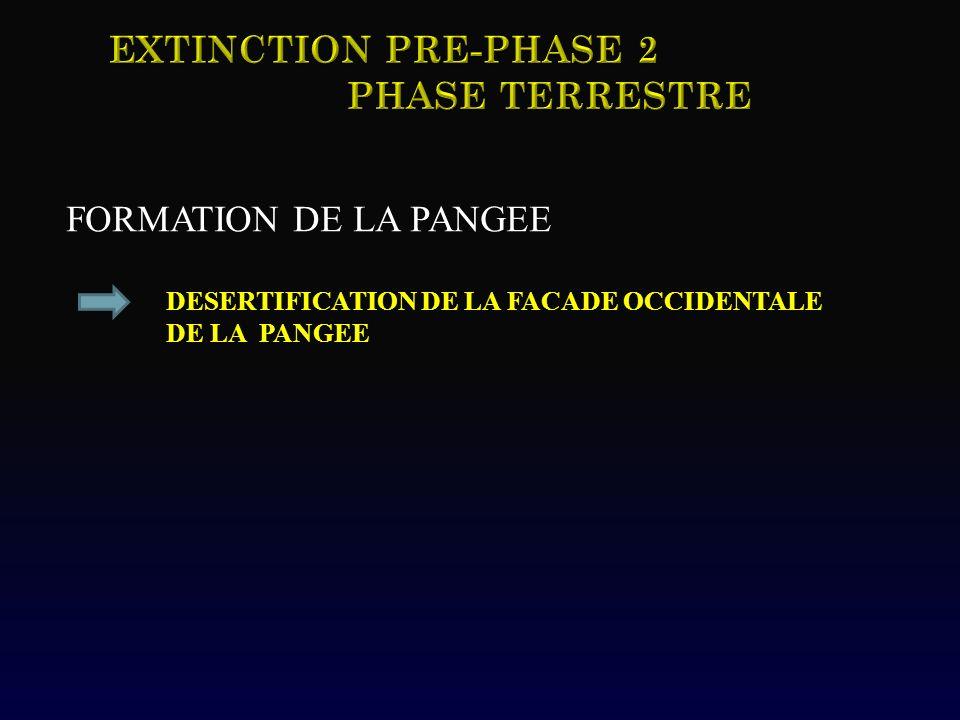Extinction pRE-Phase 2 Phase TERRESTRE FORMATION DE LA PANGEE