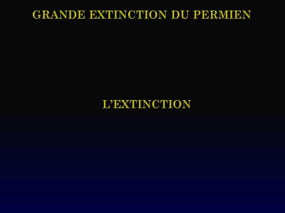 Grande extinction du permien