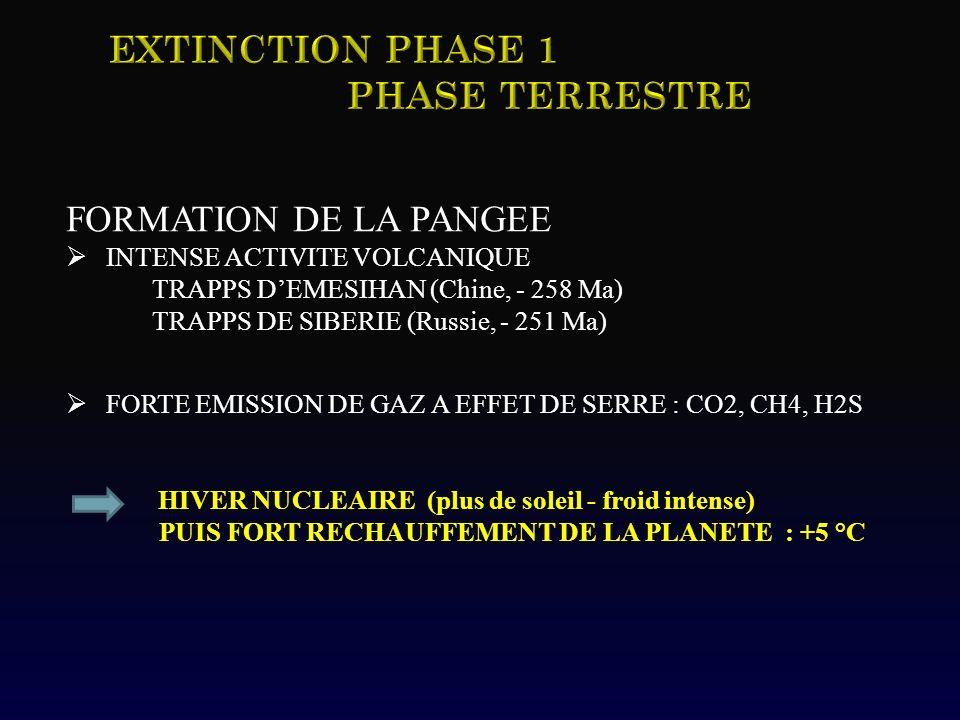 Extinction Phase 1 Phase TERRESTRE FORMATION DE LA PANGEE