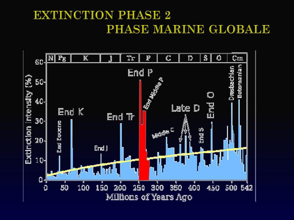 Extinction phase 2 Phase MARINE GLOBALE