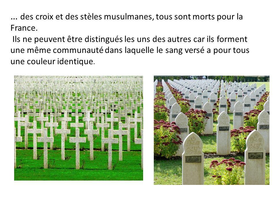 … des croix et des stèles musulmanes, tous sont morts pour la France