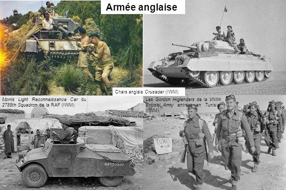 Armée anglaise Chars anglais Crusader (IWM)