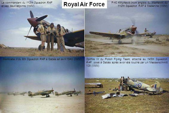 Hurricane II du 6th Squadron RAF à Gabès en avril 1943 (IWM)