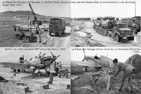 Spitfire V du 154th Squadron RAF à Souk-el-Khémis (IWM)