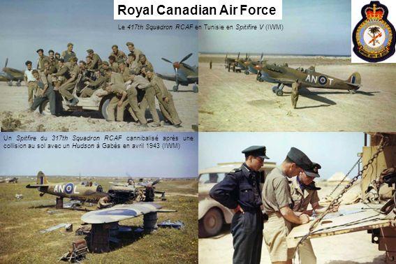 Le 417th Squadron RCAF en Tunisie en Spitifire V (IWM)