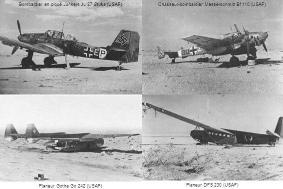 Bombardier en piqué Junkers Ju 87 Stuka (USAF)