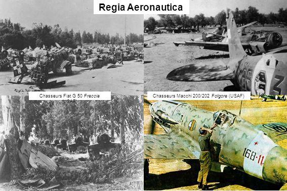 Regia Aeronautica Chasseurs Fiat G 50 Freccia (USAF)