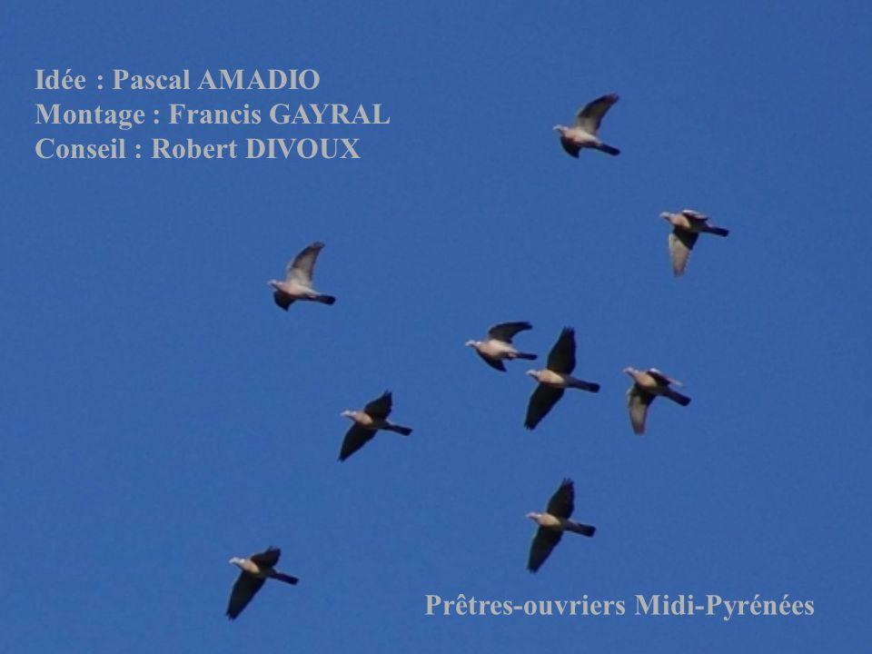 Idée : Pascal AMADIO Montage : Francis GAYRAL. Conseil : Robert DIVOUX.