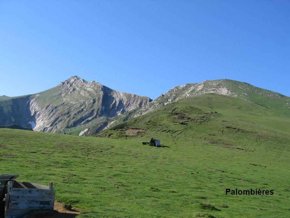 Palombières