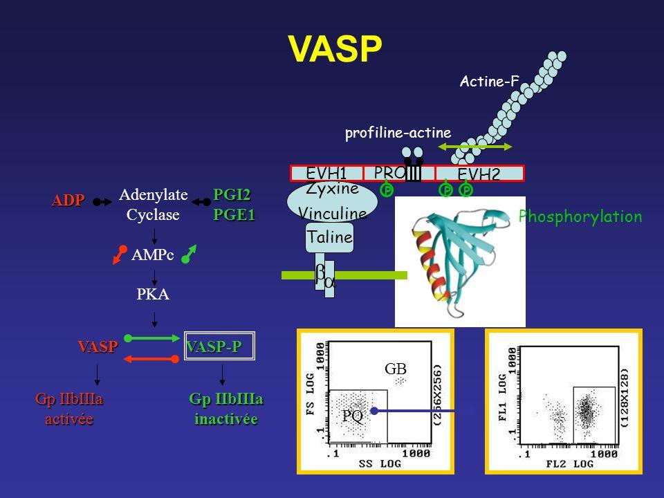 VASP b a EVH1 PRO EVH2 Adenylate Cyclase AMPc PKA PGI2 PGE1 Zyxine