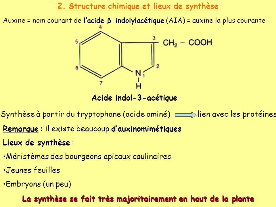 2. Structure chimique et lieux de synthèse