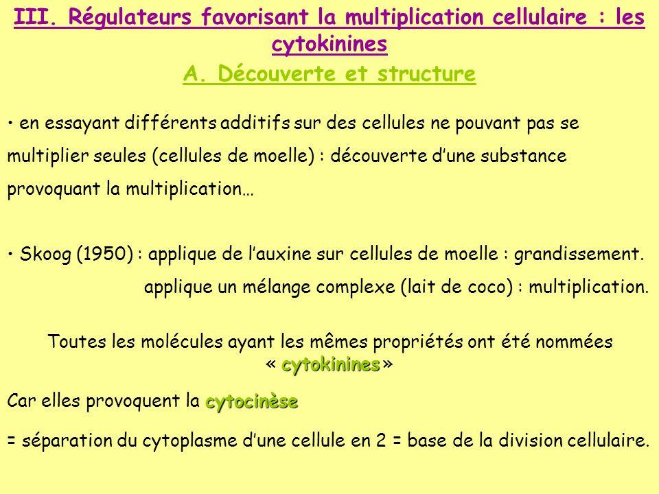 A. Découverte et structure
