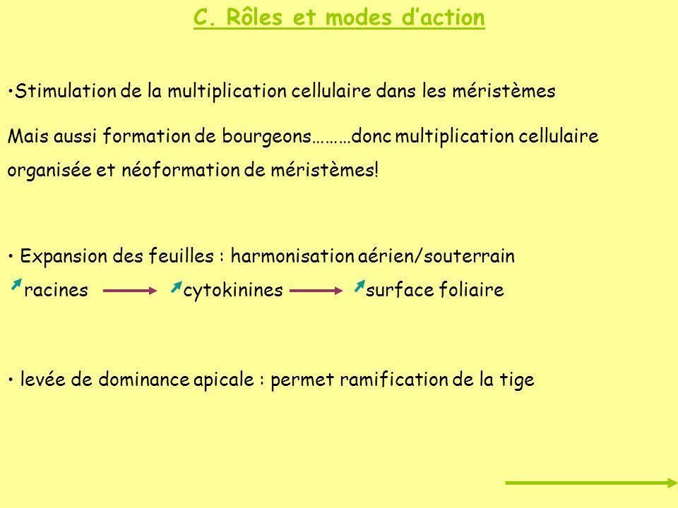 C. Rôles et modes d'action
