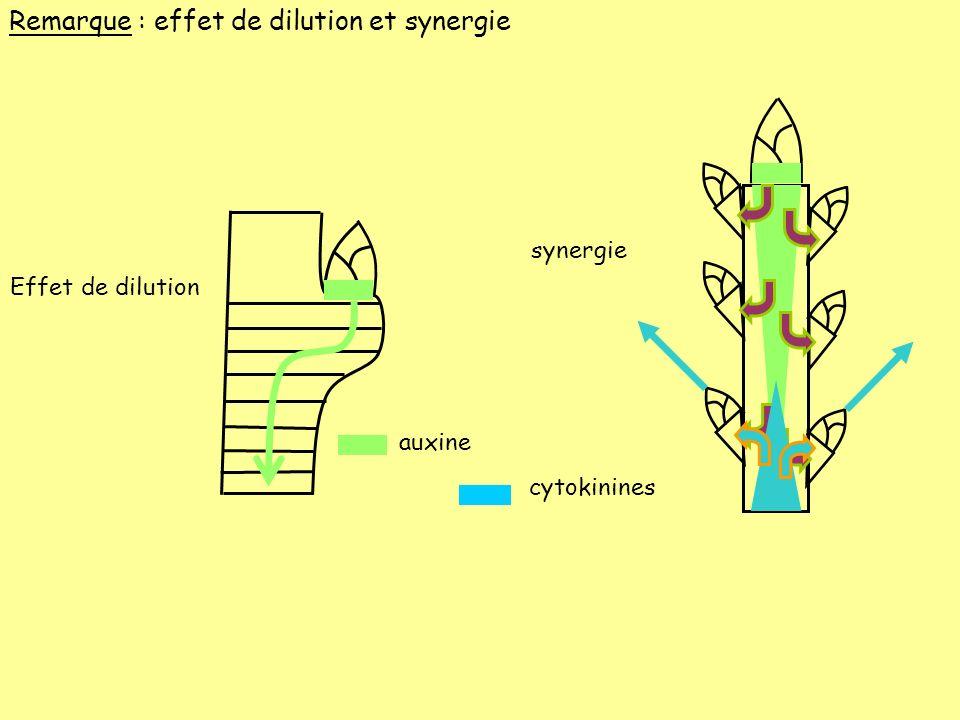 Remarque : effet de dilution et synergie