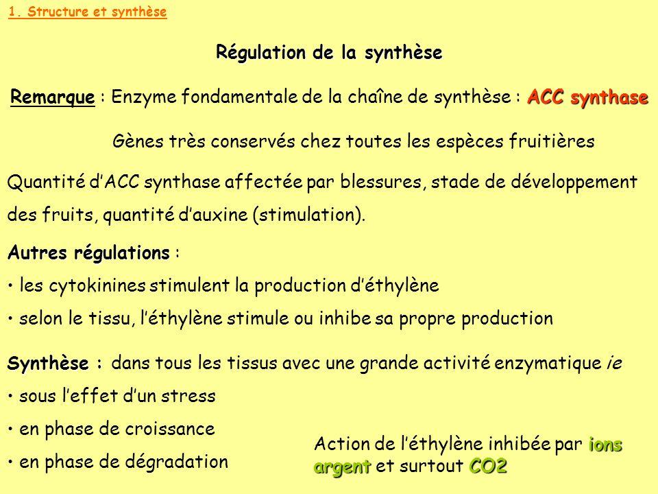 Régulation de la synthèse