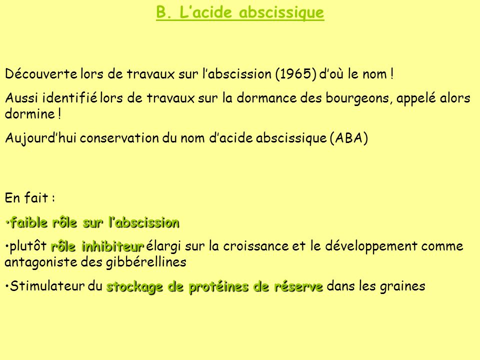 B. L'acide abscissique Découverte lors de travaux sur l'abscission (1965) d'où le nom !