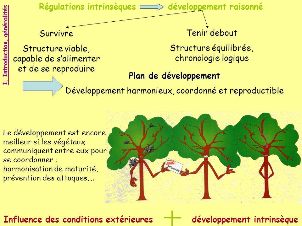 Régulations intrinsèques développement raisonné