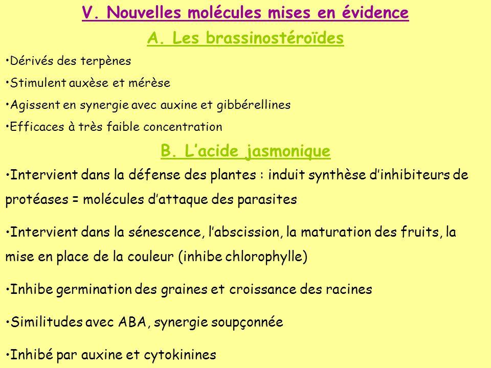 V. Nouvelles molécules mises en évidence A. Les brassinostéroïdes